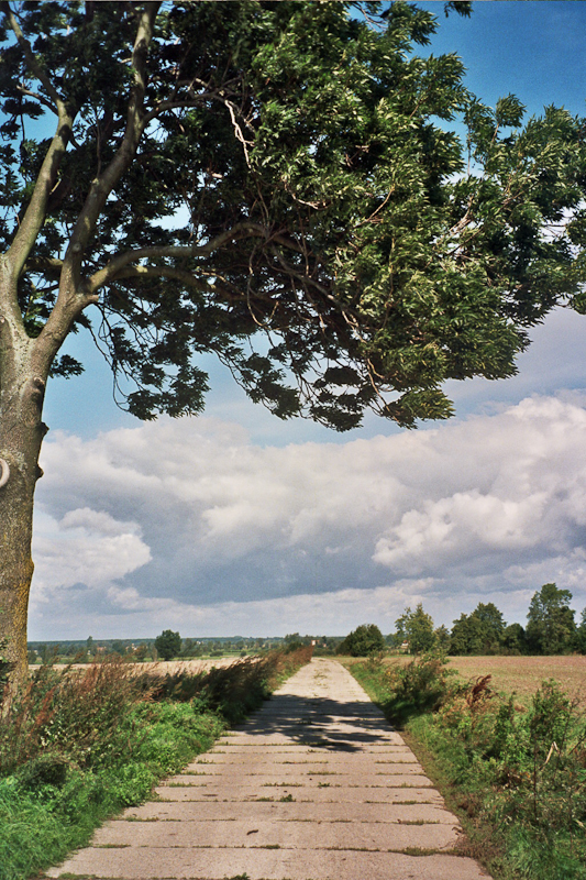 Pained with wind, road to Stankowo near Drużno lake
