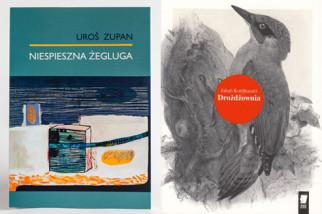 laureacji-nagrody WSzymborskiej 2016