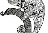 Indyjski kameleon - CiociaMrok